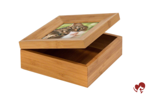 Urna caja tributo gato